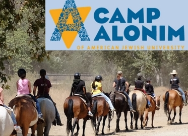 Summer Camp! Get 3 or 5 Full Days of Gan Alonim Day Camp Located on 2700 Acres With Horseback Riding, Sports, Ropes Course, Swimming, Music, and Art! May Purchase 1 Certificate For Each Camper