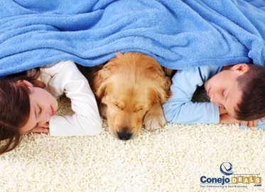 Carpet Cleaning Starting at $49 by Clean Start Carpet and Tile! (Value $99-$199)