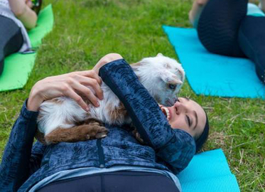 Goat Yoga Back By Popular Demand! Goat Yoga With Lavenderwood Yoga! $15 For One 50-Minute Goat Yoga Class Experience. Ages 5-95! May Purchase Multiple Certificates!